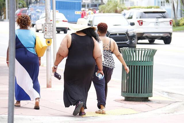 Obesidad y Alzheimer - Catedra Abierta de Psicologia y Neurociencias